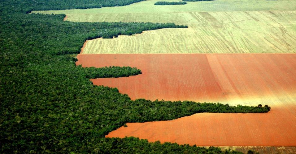 AMAZÔNIA ATINGE EM 2012 O MENOR DESMATAMENTO EM 24 ANOS, DIZ GOVERNO