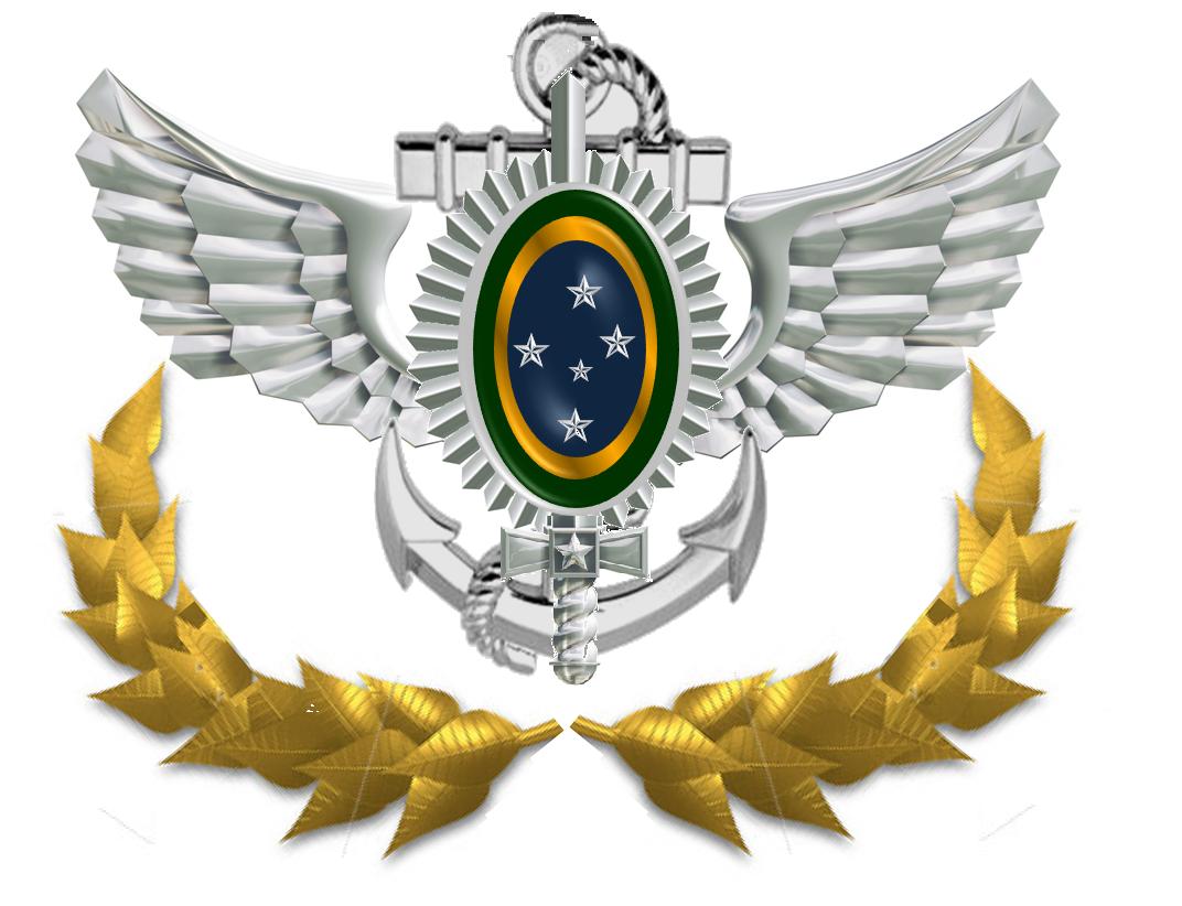 Vídeo:O verdadeiro Exército Brasileiro / The real Brazilian Army