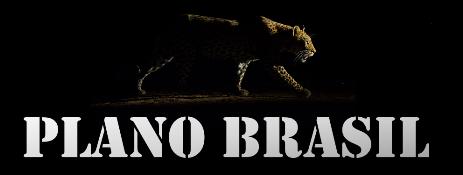 Colabore com o Plano Brasil
