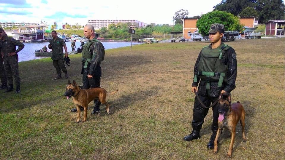 FAB PÉ DE POEIRA: Pelotão de Cães de Guerra do BINFAE-BR  realiza adestramento com CFN e PF.