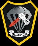 Figura 1: Distintivo das Forças Especiais do Exército Brasileiro idealizado pelo Major Gilberto Antônio Azevedo e Silva por ocasião do 1º Curso de Operações Especiais. O título deste texto é uma referência direta a este distintivo. (Fonte: Acervo do COpEsp).