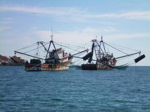 Instituto Chico Mendes recebe aviso da Marinha sobre arrastão, a partir de hoje, na área da Reserva Extrativista Marinha