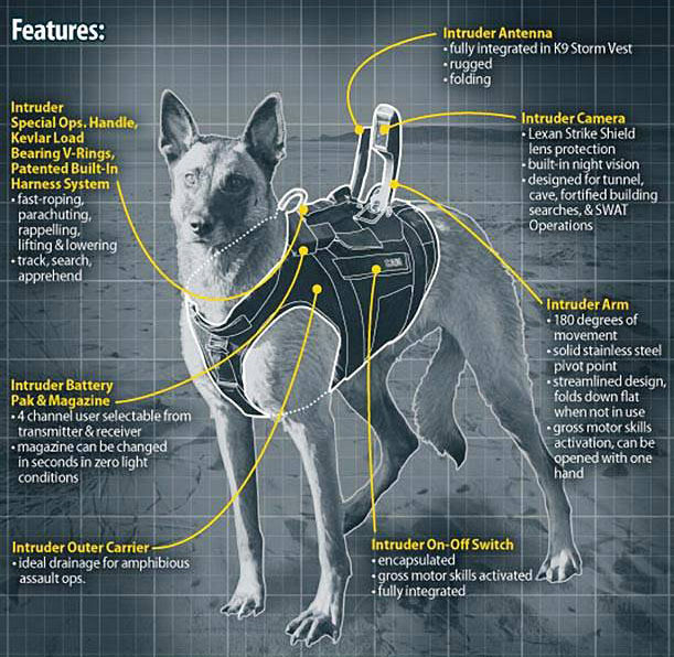 Figura 2: Aparatos tecnológicos disponíveis no colete tático dos cães de combate à serviço dos US Navy SEALs. (Fonte: Disponível em: https://navyseals.com/2163/the-dogs-of-the-navy-seals/ Acesso em: 27 nov. 2016).