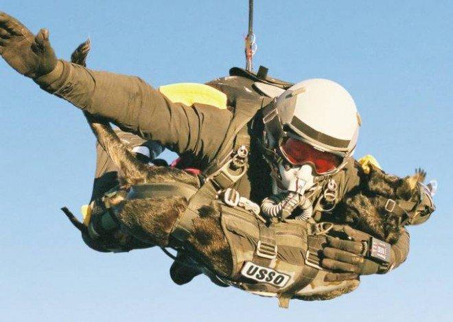 Fotografia 1: Operador SEAL executa SLOP (Salto Livre Operacional) transportando um cão de combate. ((Fonte: Disponível em: https://navyseals.com/2163/the-dogs-of-the-navy-seals/ Acesso em: 27 nov. 2016).