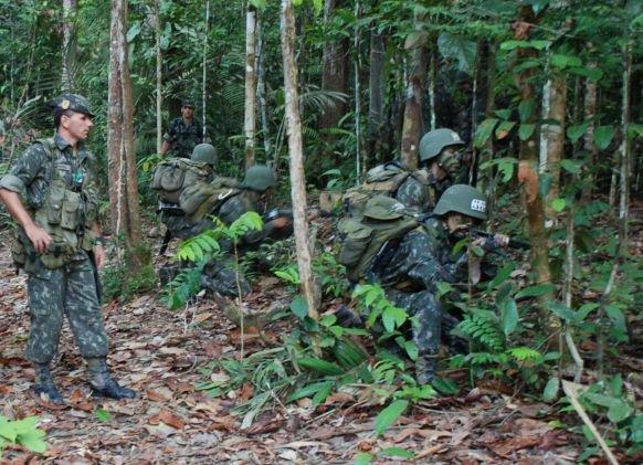 Segurança Pública: Combate ao narcotráfico nas selvas do Rio de Janeiro