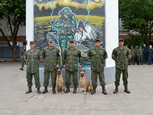 ADSUMUS: Grupamento de Fuzileiros Navais de Ladário (GptFNLa) realiza adestramento ribeirinho e ações de segurança orgânica na região do 6° Distrito Naval