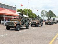 O Esquadrão de Cavalaria Mecanizado nas Brigadas Mecanizadas e Blindadas