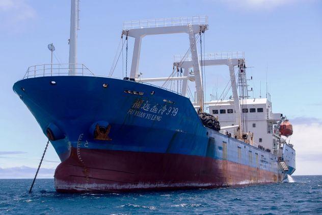 Voracidade dos navios pesqueiros chineses ameaça mares da América Latina