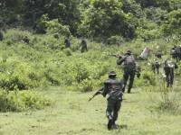 Rapidinhas da Venezuela: Exercito Venezuelano anuncia  construção de  Centro de Guerra na Selva na Fonteira com a Guiana.