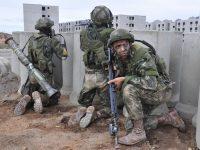 Infantaria Profissional do Exército Brasileiro